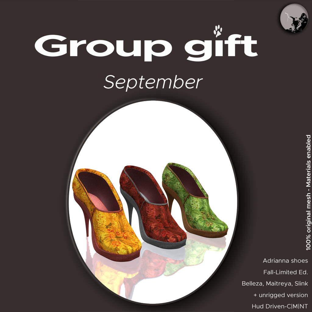 September group gift : Adrianna shoes Fall limited edition graphic